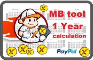 1 Year Online calculation MBtool